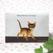 猫 障害者手帳カバー(東京都サイズ) アビシニアン イラスト B