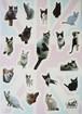 オリジナルシール【白黒猫】 ARK Original Sticker[Black&White cat]