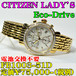 CITIZEN Lady's Eco-Drive FB1003-51D 定価¥75,000-(税別)