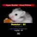 YIL Hyper Booklet - ビジュアルアーカイブ 「ハムスター-01」