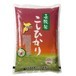 千葉県産長狭米こしひかり 2kg