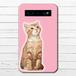 #000-009 モバイルバッテリー 猫 ねこ かわいい セール ネコ iphone スマホ 充電器 タイトル:見つめる猫