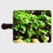 緑に潜む 各種Android 手帳型スマホケース