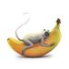 バナナとハヌマーンラングール mini print
