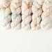 ホップ (Bluefaced lace)