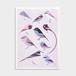 Riso print / BLACK - TORI - 47都道府県鳥 NEWS