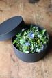 -hakoniwa-Flower Arrangement Ssize