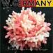 西ドイツ刻印★桜色♪コーラルピンクルーサイト クラスターブローチ,フェイク珊瑚,コサージュ