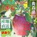 青森県津軽産りんご【サンふじ】訳あり 3Kg/箱【送料無料】