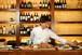 出張シェフde 三陸ディナーコース  ~ご自宅・指定の場所がレストランに早変わり♪~