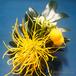 Lino⌘ 可愛いお花のヘアクリップ!〜yellow〜