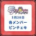【3/28ライブ】各メンバーピンチェキ【予約商品】