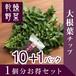 だいこん 大根葉チップ 乾燥野菜 (干し野菜) 1個分 お得セット(10+1パック)