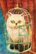 鳥籠の猫 ポストカード