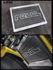 【RB0009】Radiator guard Diablo For Rebel300(JP250)&500