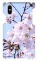 iPhoneXスマホケース 【桜】
