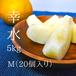 梨好きの方にぴったり!ご自宅用に!【小ぶり】幸水20個入り(5kg)