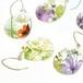 《セミオーダー:A~D》お好きな組み合わせを選べる 山野草 森の花のピアス・14kgf・イヤリング可