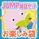 Hey!Say!JUMP 雑誌10冊セットお楽しみ袋