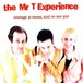 【USED】The Mr.T Experience / Revenge Is Sweet, and So Are You