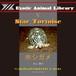 エキゾチックアニマルライブラリ 05「ホシガメ」(PDFデータ)
