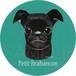 プチ ブラバンソン/黒《犬種名ステッカー/小型犬》