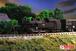 T019-6 国鉄 C11 蒸気機関車 254号機タイプ(門鉄デフ)