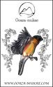 ブローチ - Oiseau a ventre rouge