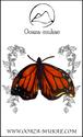 ブローチ - Papillon