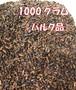 カカオニブ1000g バルク(浅煎り/深煎り)