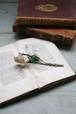 フランス アンティークコサージュFrench antique Artificial flower Corsage / an-15009