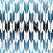 12-c 1080 x 1080 pixel (jpg)