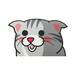 スコティッシュフォールド(大)     猫ステッカー