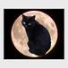 MOON CAT・メガネ拭き