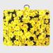 パスケース★黄色い花