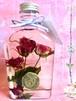 【the ROSERIUM】magenta rose