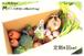 【定期4回分~毎週or隔週~】大山野菜Box Mサイズ【二回目以降の発送代込】