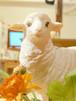 【送料込み】羊の置物