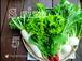 無農薬有機野菜セットSサイズ【5回分】