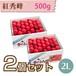 【さくらんぼ】紅秀峰 500g【2L】×2個セット