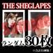 【チェキ・ランダム30枚】THE SHEGLAPES