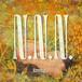 【6/23発売】Newdums / N.N.N.