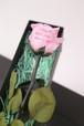 【メッセージフラワー】花びらにメッセージをプリント