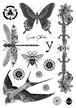 Tattoo Sticker <Swallow & Dragonfly>
