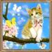 【印刷物】ステッカー(シール):sakura ~桜~