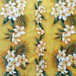 USA Cotton Hawaiian Fabric     プルメリア