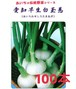 【玉ねぎ苗】愛知早生白 (100本)