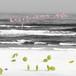 川辺ヒロシ - LAZY SUMMER MIX [MIX CD] (ステッカー付き)