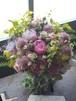 生花【Bouquet】Lサイズ《送料•税込》