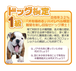 ドッグ検定1級(再受験・カード決済)